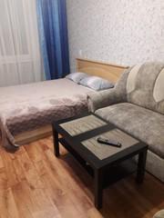 Отличная и недорогая 1-комнатная квартира на сутки в Новополоцке